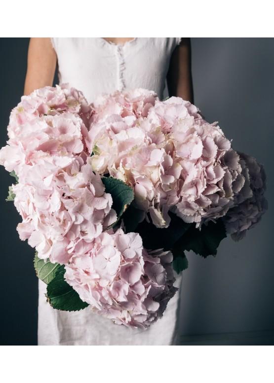 Букет из 5 розовых гортензий