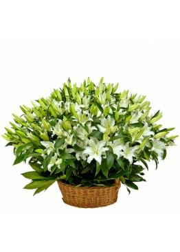 Корзина из 51 лилии