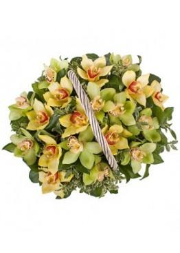 Корзина из орхидей