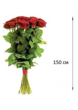 Розы высотой 150 см., поштучно от 5 штук